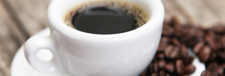 cafés bio torréfiés